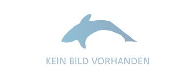 Kunstköder fürs Trolling Rhino Salmon Doctor Schleppblinker king salmon