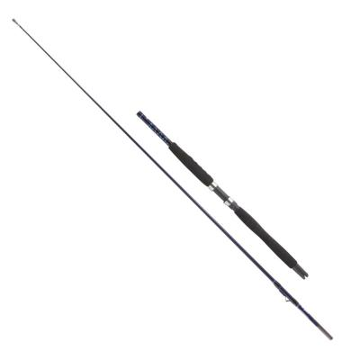 DEGA DEGA ExxPure Inliner (15-25lbs) 2,30 m
