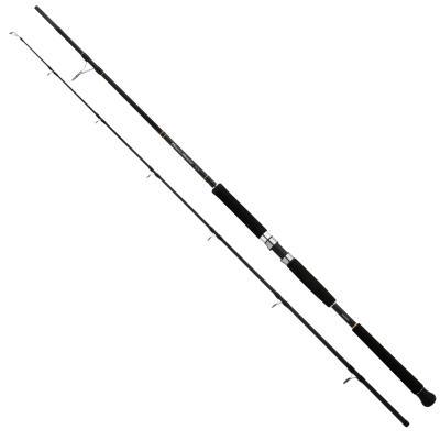 Shimano Beastmaster Pilk 215 2,15m 40-95g