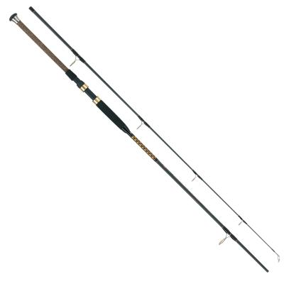 WFT Int.Ocean Fighter 100-400g, 20lbs, 2,70m, 2tlg.