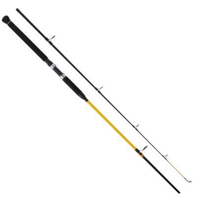 WFT NC Big Fish 150-700g 2,40m