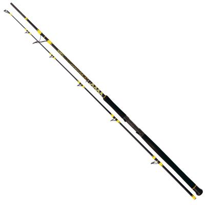 Black Cat Passion Pro DX Boat Spin  2,40 m, 50-190 g