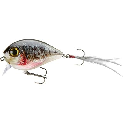 Cormoran Team Cormoran Belly Dog N dying roach 6.8cm 24g SB1