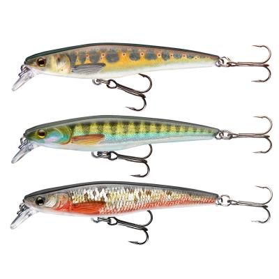 Cormoran Wobbler Set 2 mixed