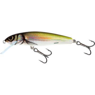 Salmo Minnow Floating 7cm 6G Holo Bleak 1/1,5m