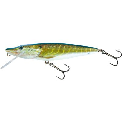 Salmo Pike Flottant 11cm 15G Real Pike 0,5 / 1,0m