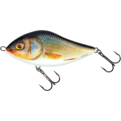 Salmo Slider coulant 10cm 46G Real Roach 1,0 / 1,0m