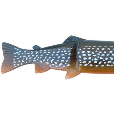 Boîtier de rechange Castaic Hard Head 30,5 cm Pike